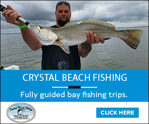 Rollover pass webcam on bolivar peninsula check back as for Rollover pass fishing report