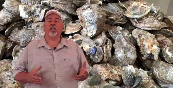 Bolivar LIVE The Taste Of At Jose's Cajun Seafood and Steaks, Talking Fresh Oysters!!