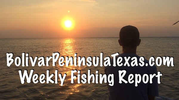 Bolivar peninsula blog get the latest news from bolivar for Galveston jetty fishing report