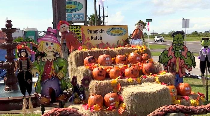 Time To Visit The Pumpkin Patch At Latitude 29 Surf Shop IN Crystal Beach Tx!